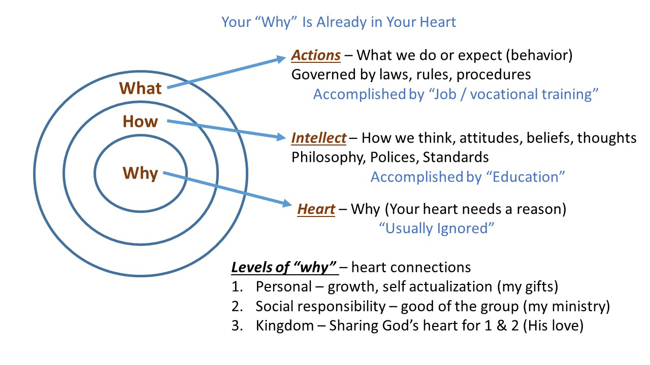 2014-08-02 Why is your heart