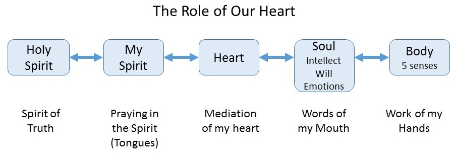 2014-09-27 role of heart