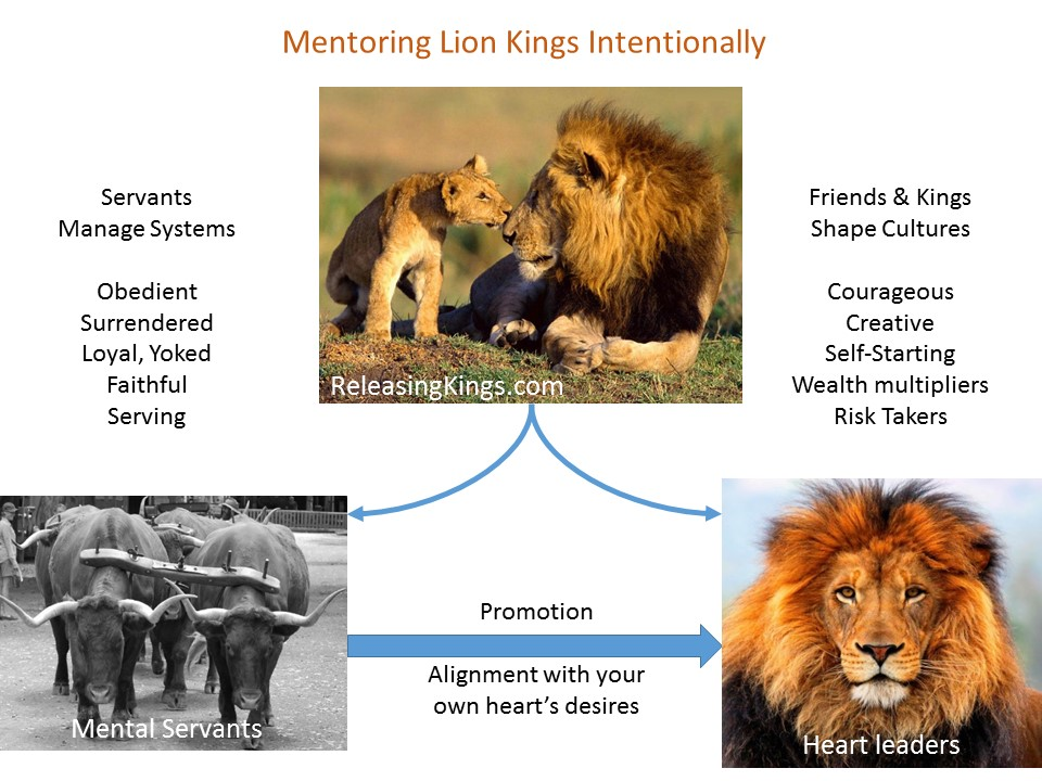 2015-07-18 ox and lion